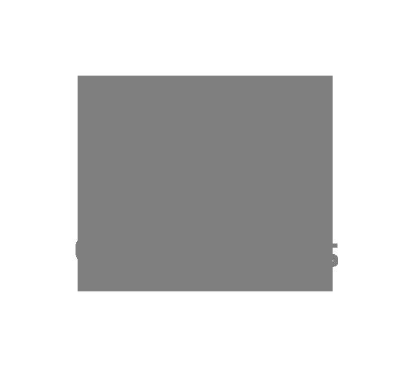 logo-open-wings